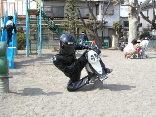 20081009syurugazo32_2