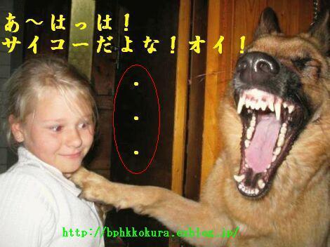 Sakou